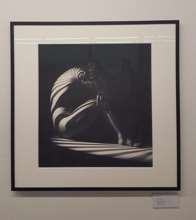"""Bildhalle, фотограф Werner Bischof  """"Zebra Woman"""",  Цюрих, 1942"""