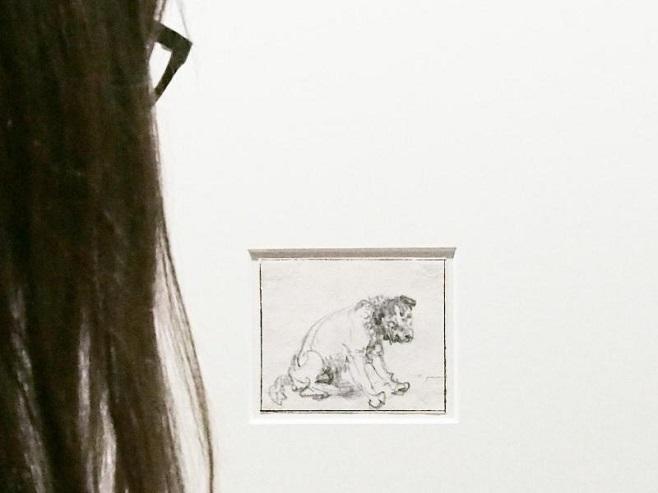 Нововийялений рисунок Рембрандта у Німеччині