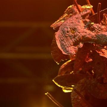 Ліза Портнова, арт-інсталяція «Оберіг» / Фото: Юлія Беглецова